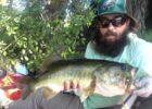 6-lb-bass-june-bug-plubber-worm-mrwiffelure-Copy