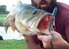 Jason-9lb-bass-test-worm