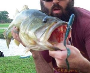 Jason 9lb bass test worm
