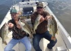 bill-darby-large-mouth-bass