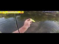 MrWiffle Shad Chartreuse Sonic Tail