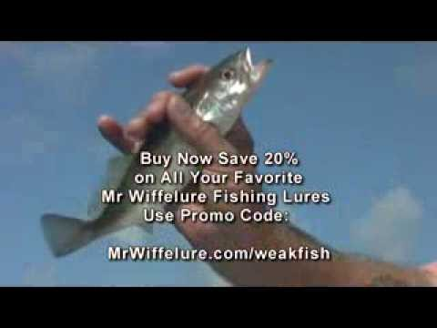 Fishing With Micro Baits